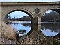 NT8440 : Coldstream Bridge from the Scottish bank by Jim Barton