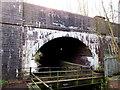 SJ3043 : Afon Eitha railway bridge and footbridge, Ruabon by Jaggery