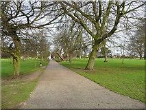 TM1645 : An avenue in Christchurch Park, Ipswich by Humphrey Bolton