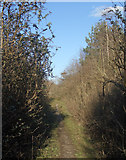 SS8280 : Public footpath east of South Cornelly by eswales