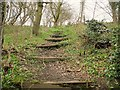 SE2432 : Footpath in Post Hill Woods  by Stephen Craven