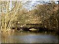 ST5860 : Walley Lane bridge by Neil Owen
