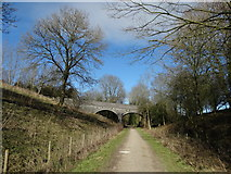 SK1750 : Bridge over the Tissington Trail by Neil Theasby
