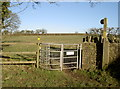 ST5956 : The way to Clutton by Neil Owen