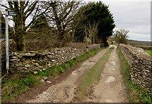 SO8700 : Public footpath at the eastern edge of Minchinhampton by Jaggery