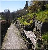 TQ3632 : Seat by Churchyard by Alan Corby