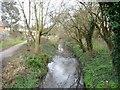 TQ1186 : Yeading Brook by Christine Johnstone