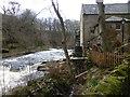 NU0601 : Thrum Mill by Russel Wills