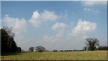 TG1407 : Farmland by Bawburgh by Evelyn Simak