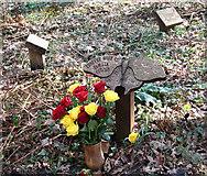 TG1608 : Woodland graves at GreenAcres by Evelyn Simak