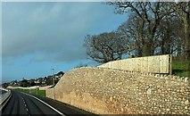 SX8769 : Wall by new road, Aller Brake by Derek Harper