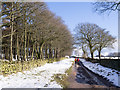 SK2077 : Rough road heading towards Sir William Hill Road by Trevor Littlewood