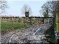 TA1666 : Waterlogged animal pens near Bessingby by Christine Johnstone