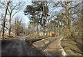 TM4667 : Vault Hill, Eastbridge by Adrian Cable