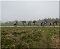 TQ1873 : Cyclists in Richmond Park by Hugh Venables