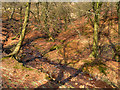SD6713 : Stream in Roscow's Tenement Clough by David Dixon