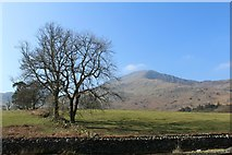 SH5848 : View from Beddgelert Station by Richard Hoare