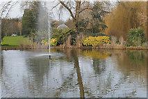 SU9850 : Lake, Surrey University by Alan Hunt