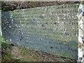 NS7331 : John Brown (1627-1685) Martyr's Grave by Raibeart MacAoidh