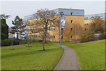 SU9850 : International House, Surrey University by Alan Hunt