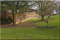 SU9850 : Guidford Court, Surrey University by Alan Hunt