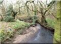 SJ7882 : Sugar Brook by Anthony O'Neil