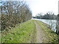 SO6903 : Purton, towpath by Mike Faherty