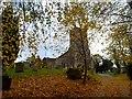 TM3862 : St John the Baptist Church with autumn leaves, Saxmundham by Bikeboy