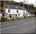 SO5916 : Ash Tree House, Lower Lydbrook by Jaggery