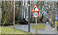 J2465 : Bend and speed limit signs, Ballymacash, Lisburn (March 2016) by Albert Bridge