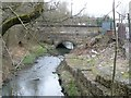 SE3503 : Looking upstream to Worsbrough Bridge by Christine Johnstone