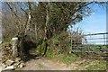 SX2263 : Green lane, Boduel by Derek Harper