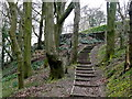 SK2898 : Steps in Tin Mill Rocher by Graham Hogg