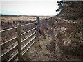NZ7813 : Newton Mulgrave Moor by Mick Garratt
