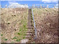 SK3617 : Footpath steps by the A511 by Ian Calderwood