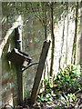 TG1600 : M&E plinth in Hethel Wood (detail) by Evelyn Simak