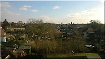 TQ1666 : Back gardens off Ewell Road, Long Ditton, from the railway by Christopher Hilton