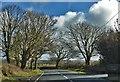 SN0024 : Road Past Scollock West by Deborah Tilley