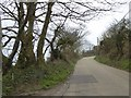 SW4633 : Cornish hedges and banks, Gear Hill, south of New Mill by David Smith