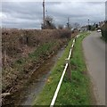 TL1460 : Duloe Brook, Staploe by Dave Thompson