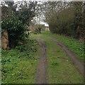 TL1560 : Path towards Hail Weston by Dave Thompson