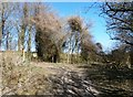 SE9627 : Disused Works Entrance on Crossall Hill Lane by Jonathan Clitheroe