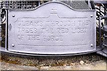 NZ2564 : The Blacksmith's Needle (detail) by David Dixon