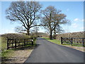 SP9934 : Road towards Wakes End Farm by JThomas