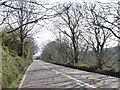 SW6227 : A394 in woodland south-east of Breage by David Smith