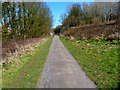 ST6176 : Path near River Frome by Anthony O'Neil