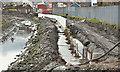 J3674 : Connswater path works, Belfast - March 2016(3) by Albert Bridge