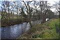 SE2061 : River Nidd by N Chadwick