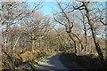 SX1259 : Lane across Redlake Cottage Meadows NR by Derek Harper