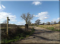 TM1555 : Footpath to Stone Street & entrance to Church Farm by Adrian Cable